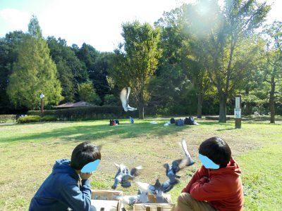 10月28日放鳩ピクニックへ行ってきました!